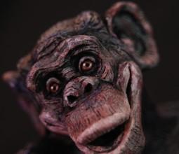 Bonsai Bonobo
