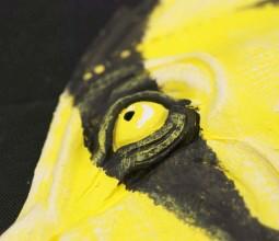 Borussia Butterfly Fish
